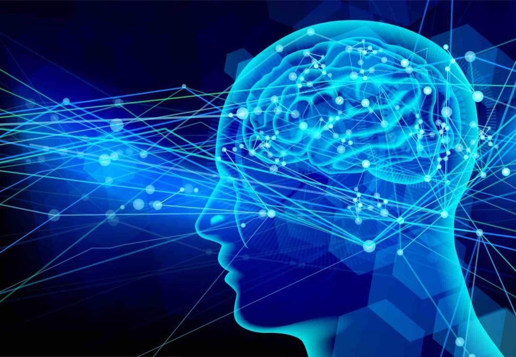 脳内の記憶の信号